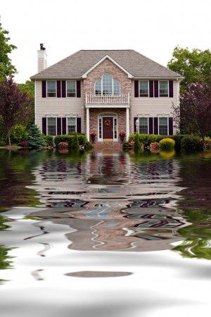洪水损坏首页